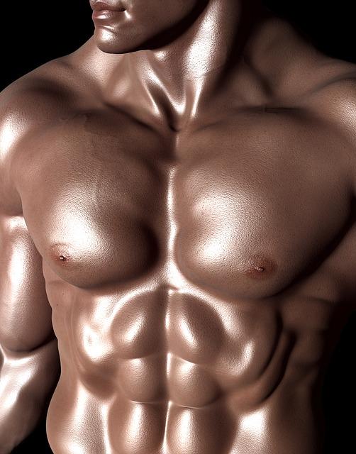 פלג גוף עליון של גבר